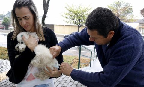 Campanha de Vacinação Antirrábica imuniza mais de 2,6 mil animais na Zona Leste
