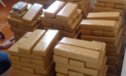 Polícia apreende mais de 400 tijolos de droga em chácara