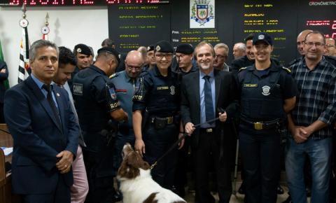 Dalben propõe que guardas municipais do país sejam enquadrados na categoria de aposentadoria especial