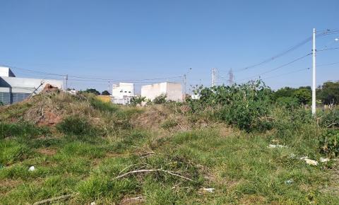 Moradores do Jardim Adélia em Santa Bárbara sofrem com descarte irregular e mato alto