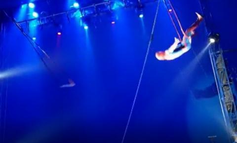 Trapezista cai durante apresentação em circo