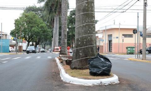 Prefeitura de Nova Odessa vai multar morador que depositar lixo fora da lixeira
