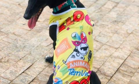 Santa Bárbara terá bloco de Carnaval com cães